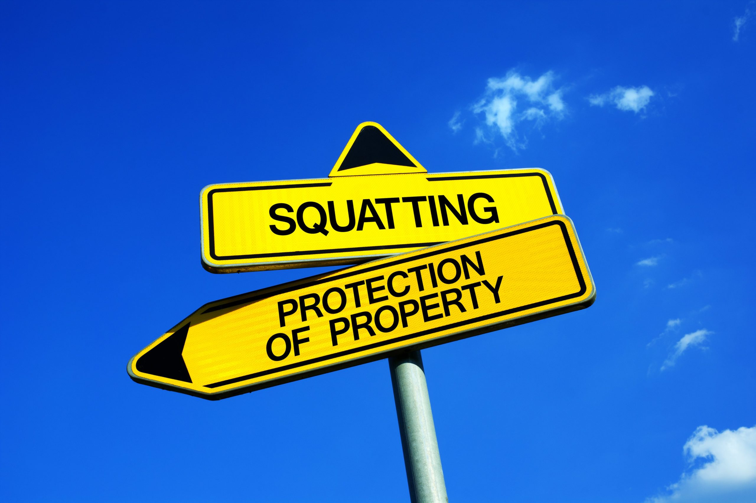 Property Squatters